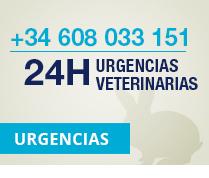 Urgencias 24h